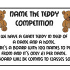 name-the-teddy-2016